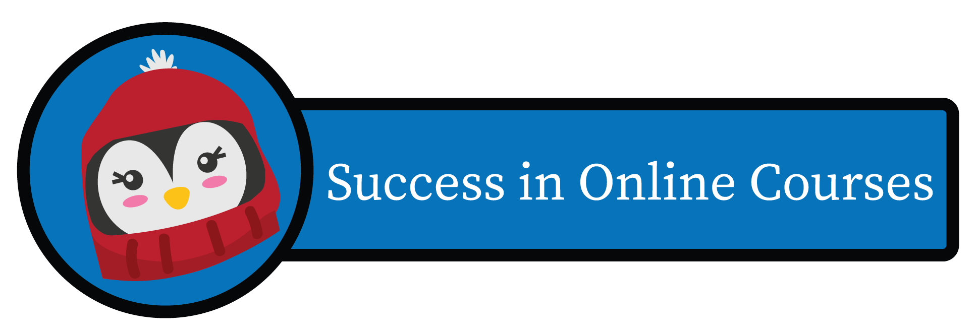 Success in Online Courses