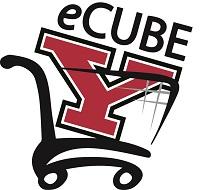 eCube Logo
