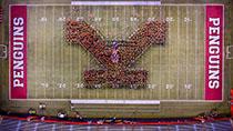 YSU Football Field With Y