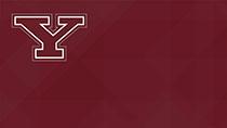 Y Logo (red)