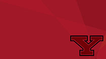 Y Logo (red overlay)