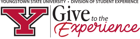 youngstown state university division of student experience give to the experience