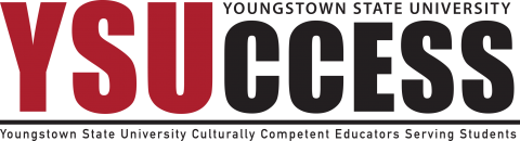 ysuccess logo