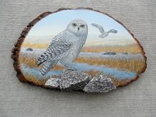 Owl painting on wood