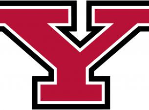 Logo of YSU