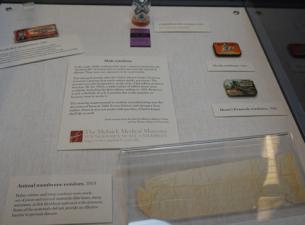 Youngstown State University is displaying a collection of contraceptives in a new exhibit at the Lin