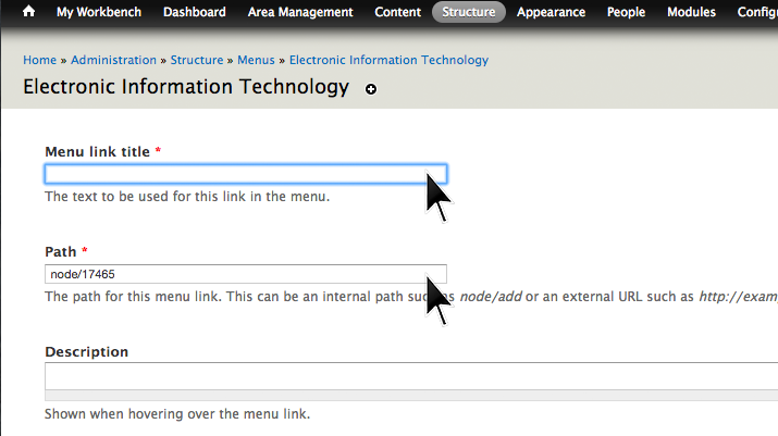 Filling out main link title and path boxes.