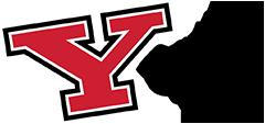 Y Card logo
